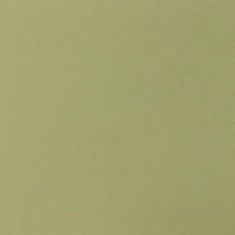 Автомобильная кожа Nappa 1881 Oyster