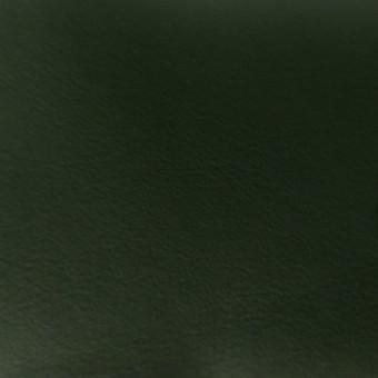 Автомобильная кожа 05521